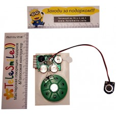 Sound module chip with button for soft toys