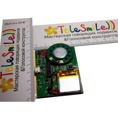 USB music rewritable module with button and battery